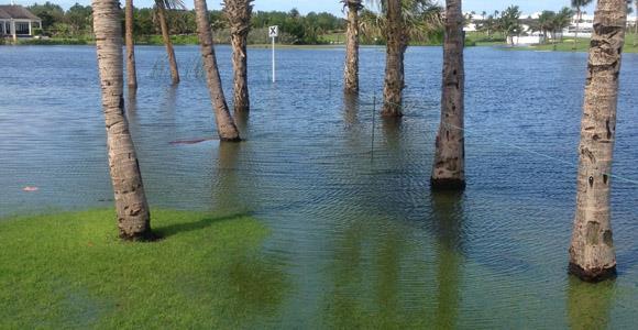 LPGA Bahamas